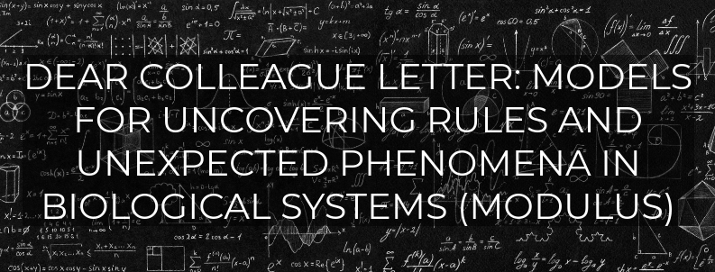 Dear Colleague Letter: Models for Uncovering Rules and Unexpected Phenomena in Biological Systems (MODULUS)
