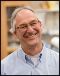 Dr. Matthias Falk